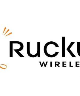 Module Ruckus902-2101-0000 E510 antenna